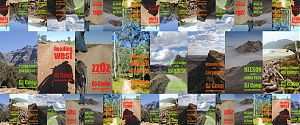 bluelake book titles image