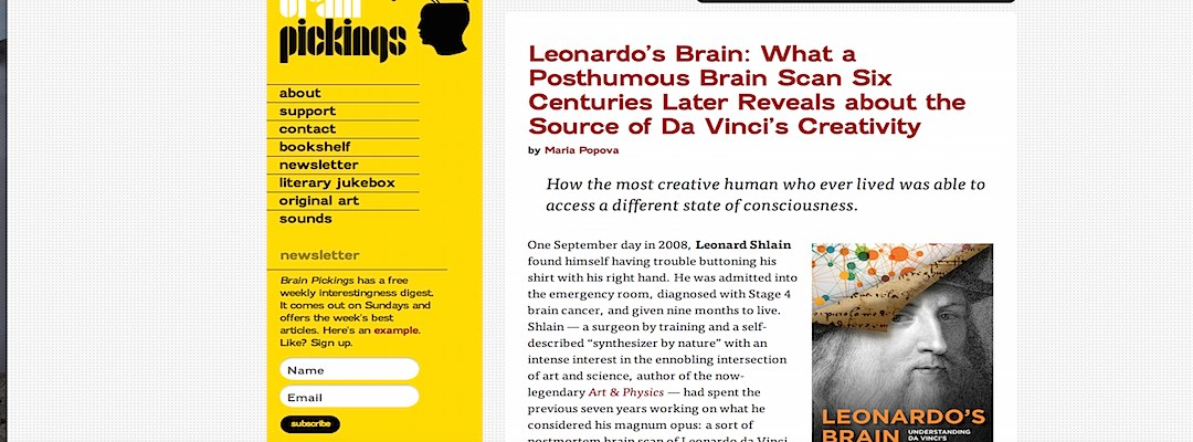 Leonardo's brain, from Brainpickings.org