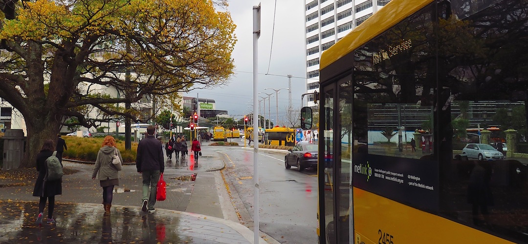 Lots of yellow in Wellington
