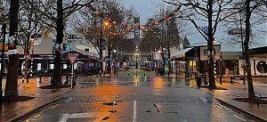8 am winter gloom in Nelson
